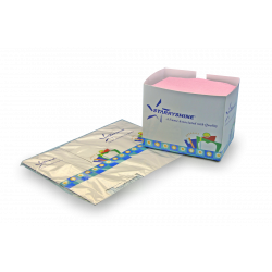 Patient Bib Dispenser - Collapsible Cardboard individually wrapp